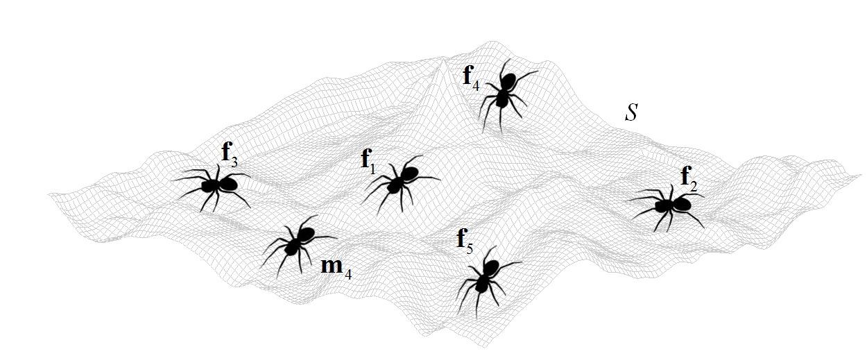 دانلود کد متلب الگوریتم عنکبوت اجتماعی SSA