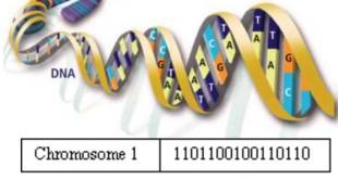 اشنایی با الگوریتم ژنتیک